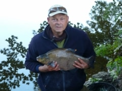 River Aire Bream