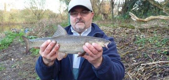 river-aire-barbel